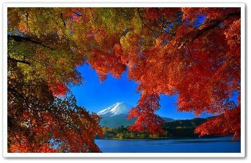 5 จุดเช็คอินสุดฮิปเที่ยวญี่ปุ่นดีที่สุดรับปี2562