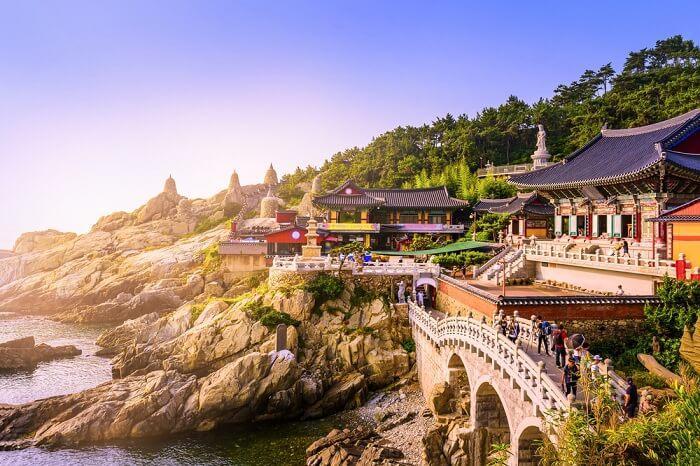 summer in south korea